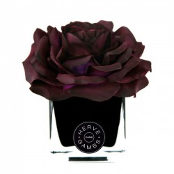 Diffuseur rose prune