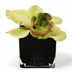 Diffuseur orchidee verte