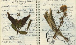 Quaderno con appunti di Desmond Knox – Fonte: archivio storico Diptyque.