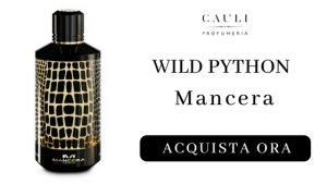 Wild Python Mancera